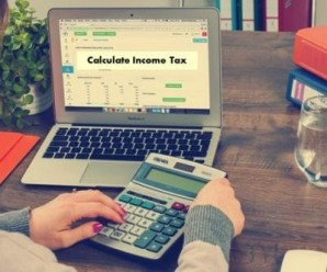 Income Tax Calculator for AY 2016-17